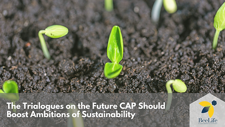 The Trilogues on the Future CAP Should Boost Ambitions of Sustainability