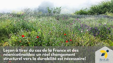 Leçon à tirer du cas de la France et des néonicotinoïdes: un changement structurel est nécessaire
