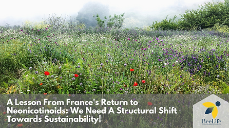 A Lesson From France's Return to Neonicotinoids: We Need A Structural Shift Towards Sustainability