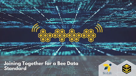 Joining Together for a Bee Data Standard