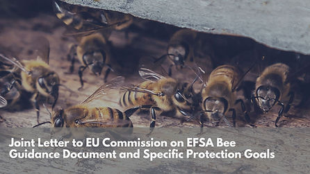 Joint Letter to EU Commission on EFSA Bee Guidance Document and Specific Protection Goals