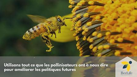 Utilisons tout ce que les pollinisateurs ont à nous dire pour améliorer les politiques futures