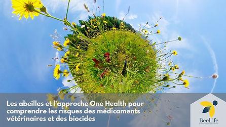 Les abeilles et l'approche One Health pour comprendre les risques des médicaments vétérinaires