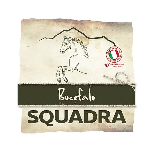 SQUADRA BUCEFALO - Gruppo 2