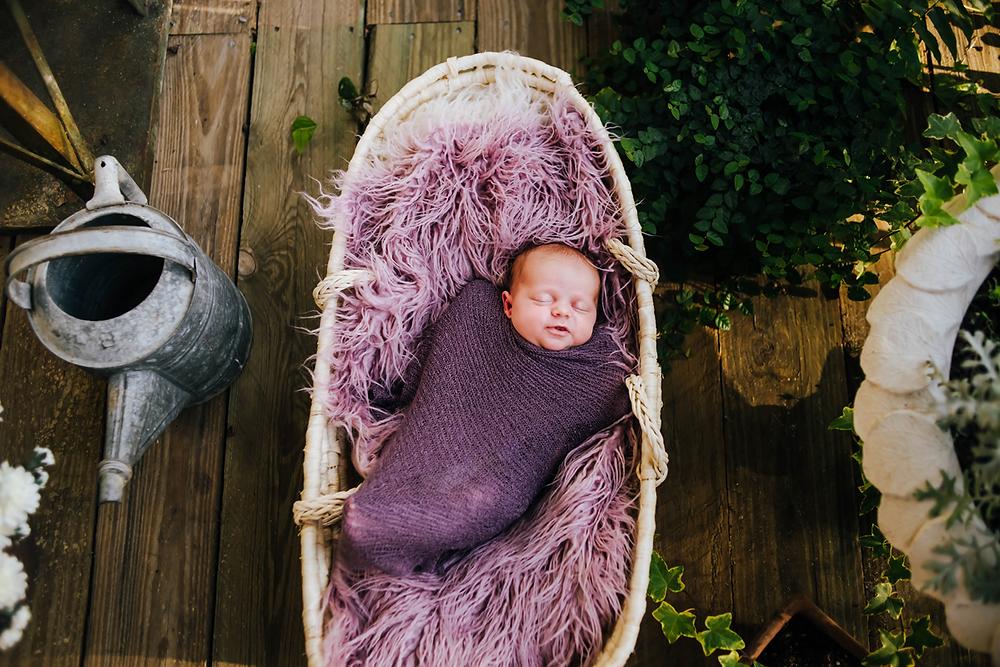 newborn photographer st augustine
