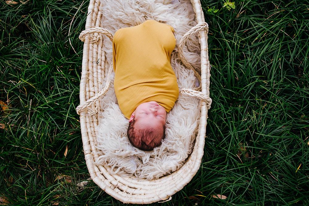 jacksonville newborn photography