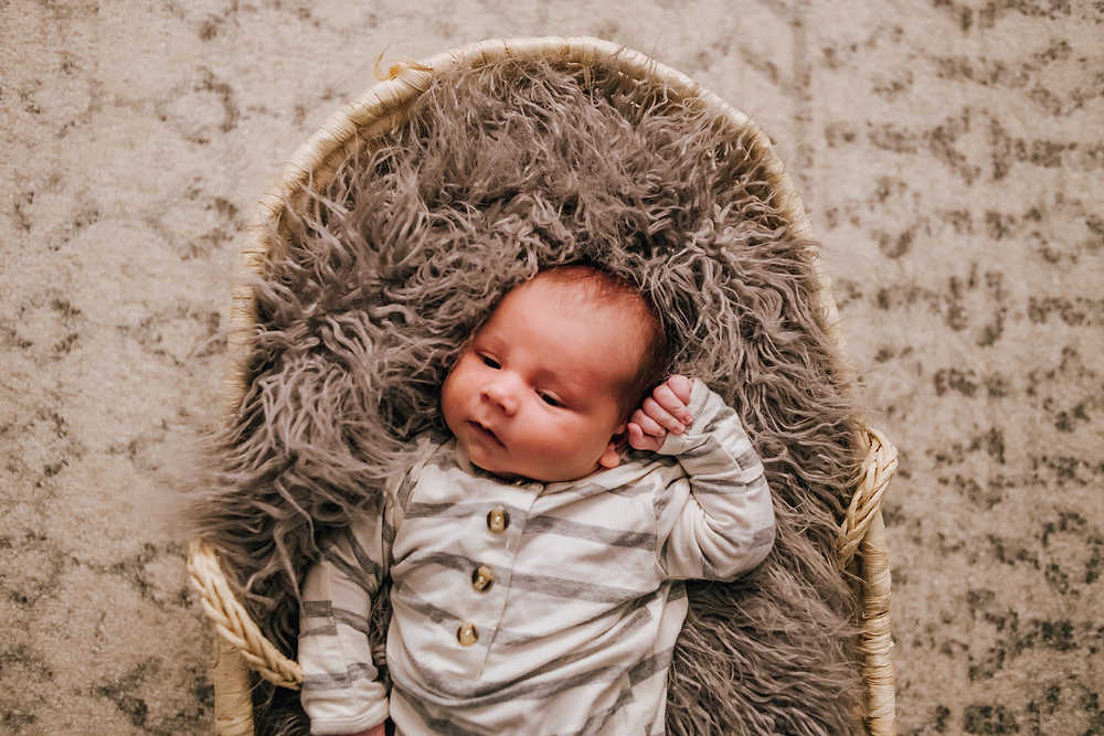jacksonville newborn photography