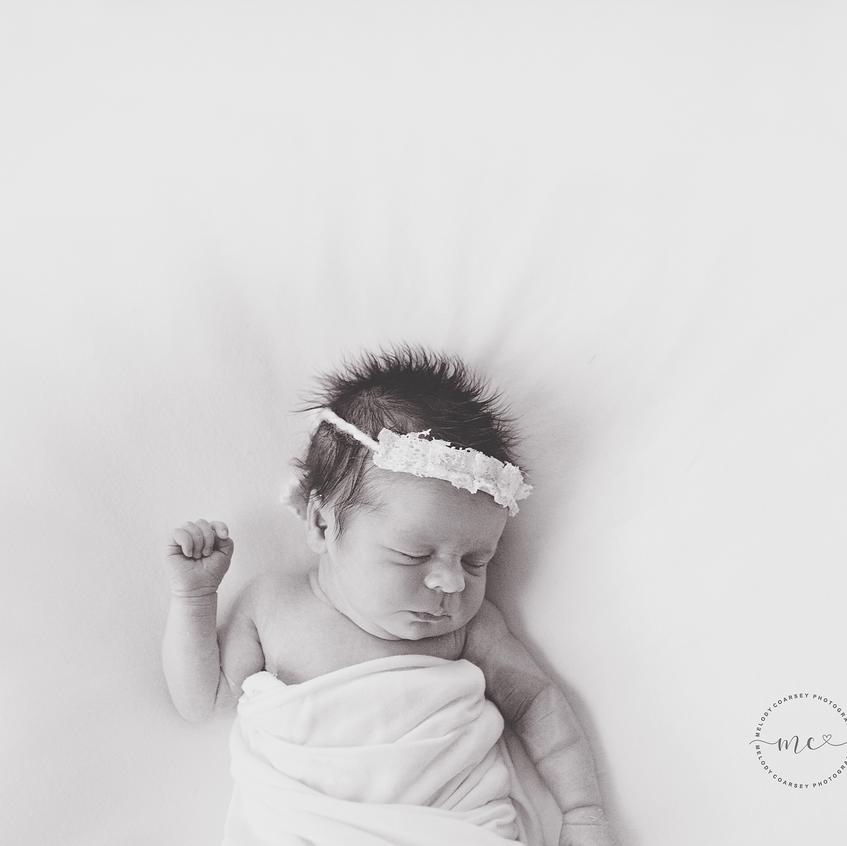 newborn-photographer-jax 3