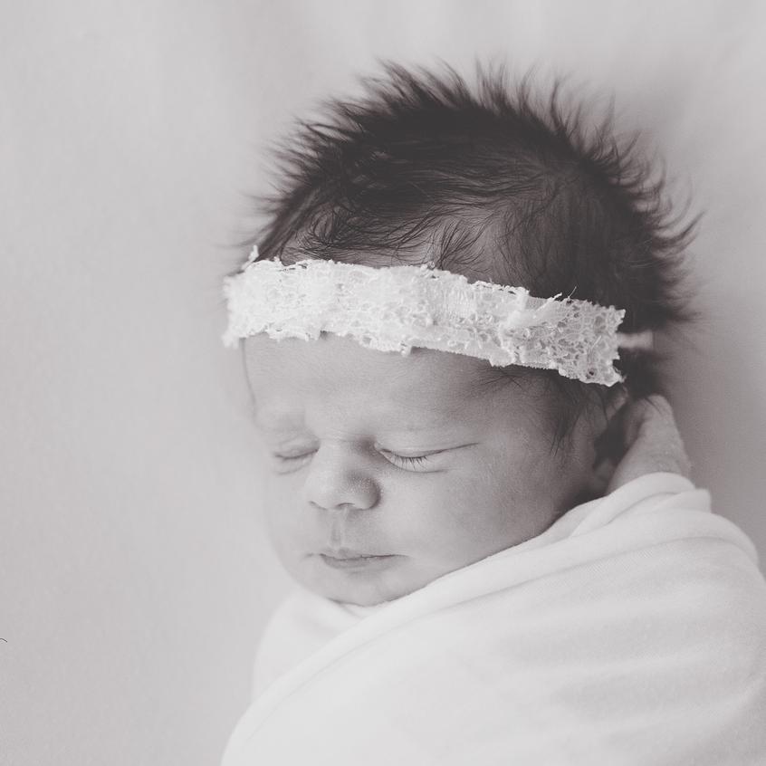 jax-newborn-photographer 2