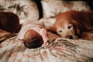 jacksonville in home newborn photographer