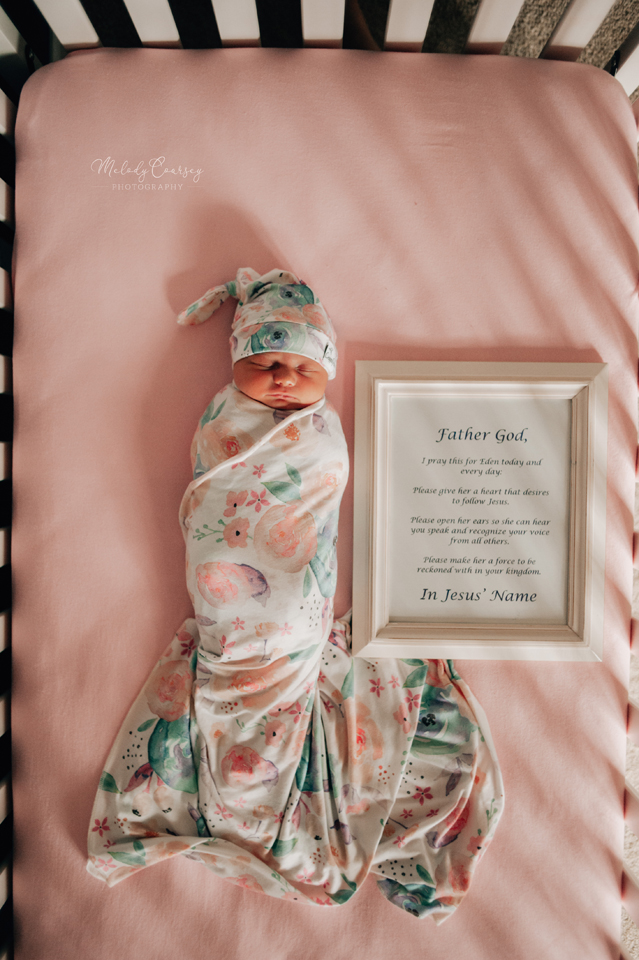 jacksonville newborn portrait photographer