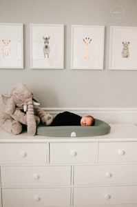 Jacksonville FL in home Newborn Portraits
