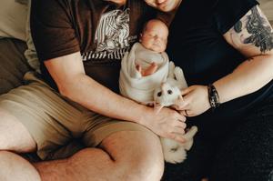 jacksonville's best newborn photographers