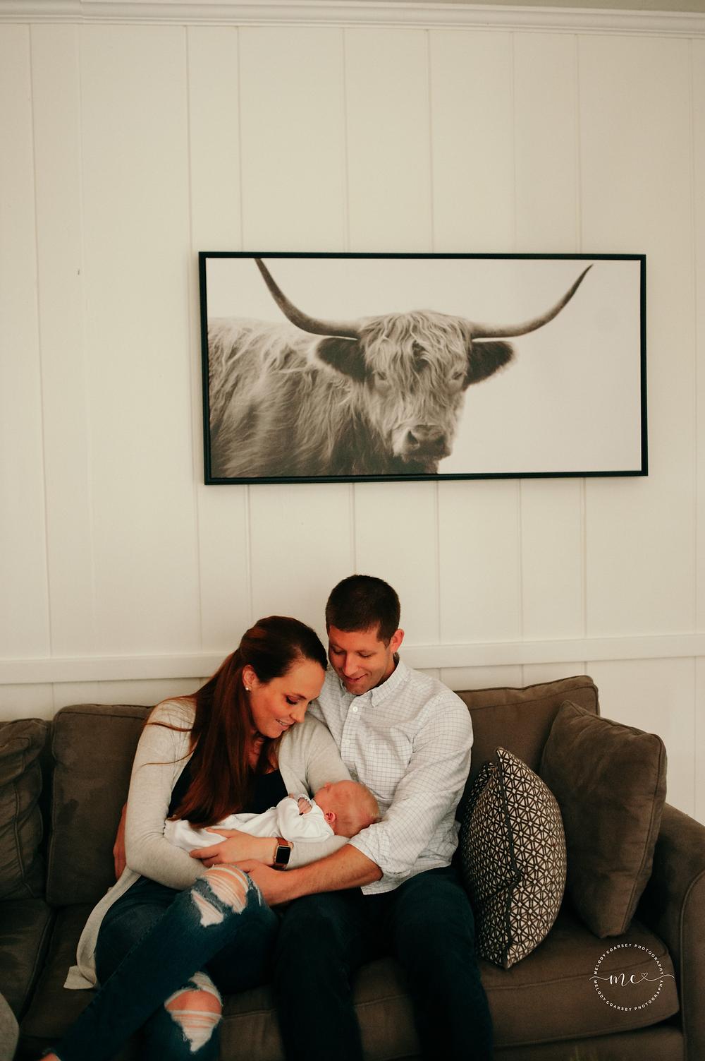 jacksonville's best lifestyle newborn photographers