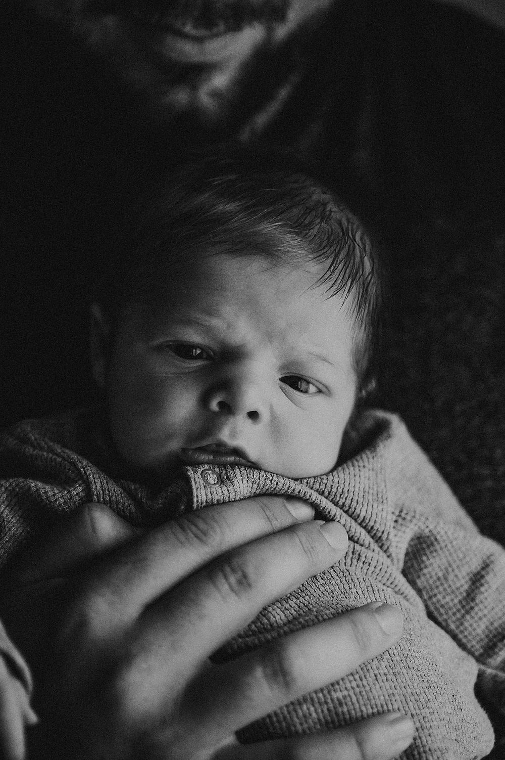in home newborn photographers near me