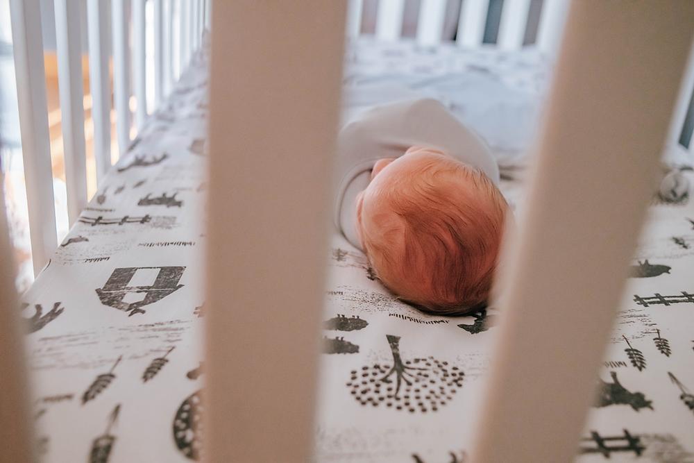 newborn photographers jacksonville fl