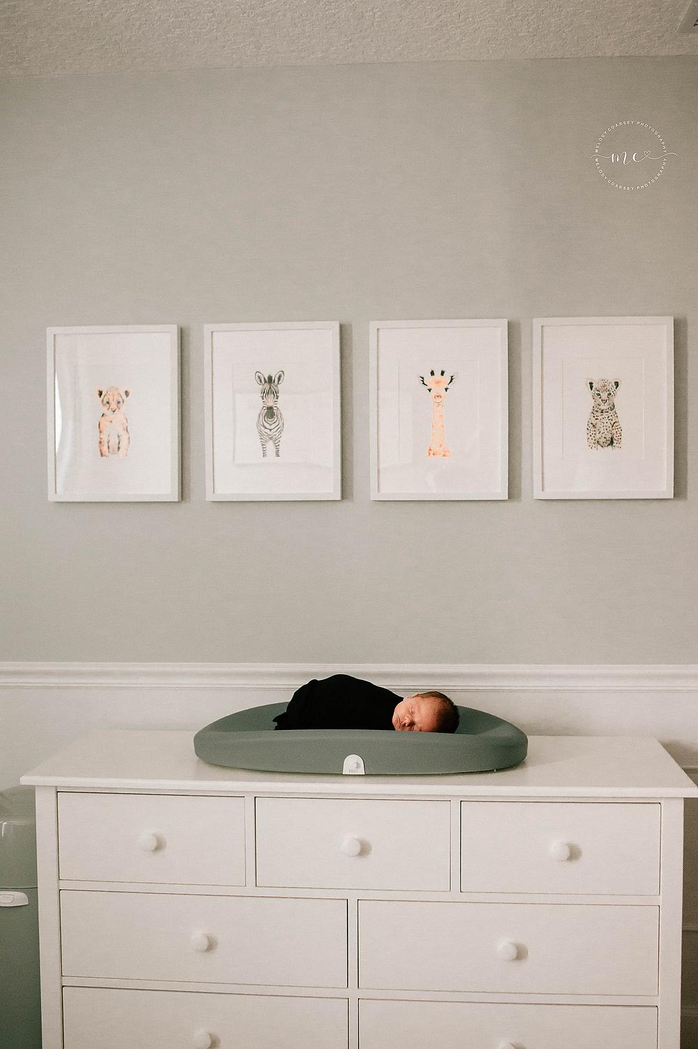 St Augustine FL in home Newborn Portraits