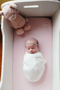 jacksonville in home newborn portraits
