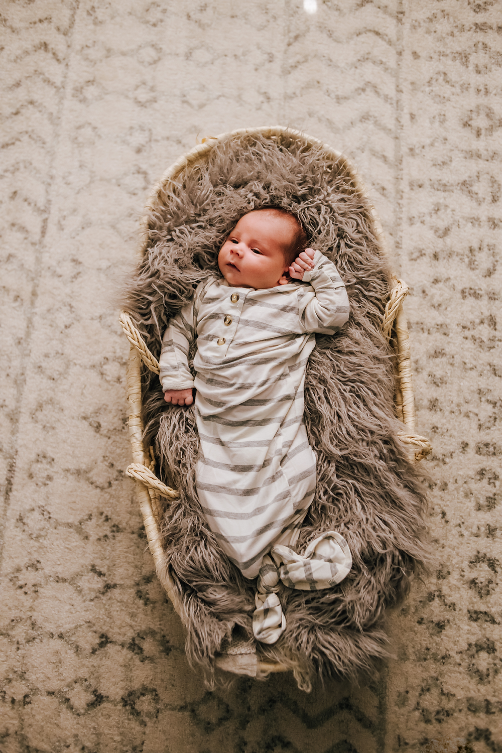 jacksonville fl newborn photography
