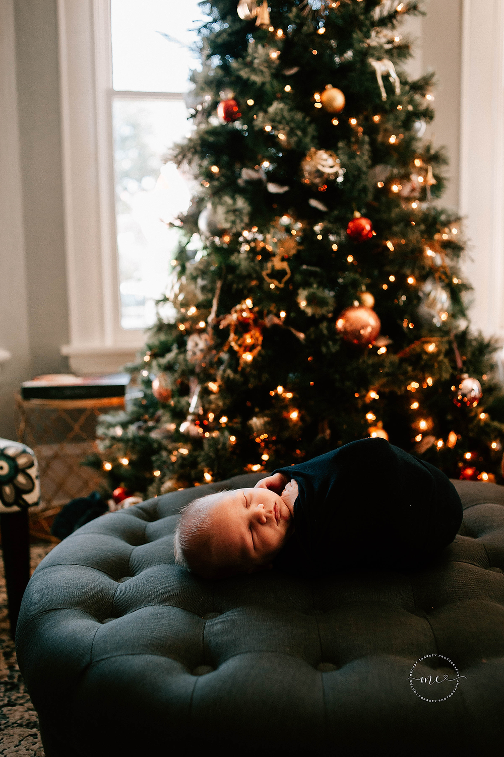 newborn portrait photographer jacksonville