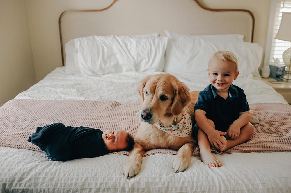 affordable newborn photoshoot