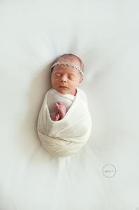professional newborn portraits jacksonville fl