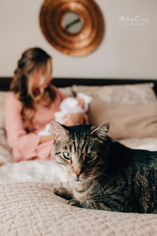 in home newborn photographer jacksonville