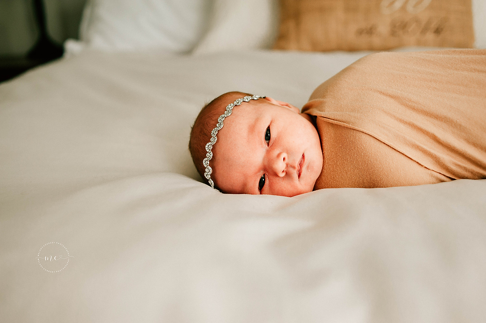 jacksonville newborn portraits