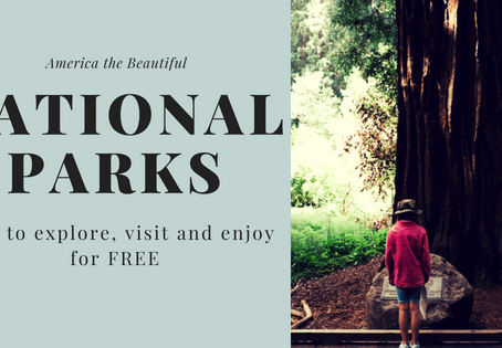 How We Visited Five National Parks FOR FREE | Tips for Moms