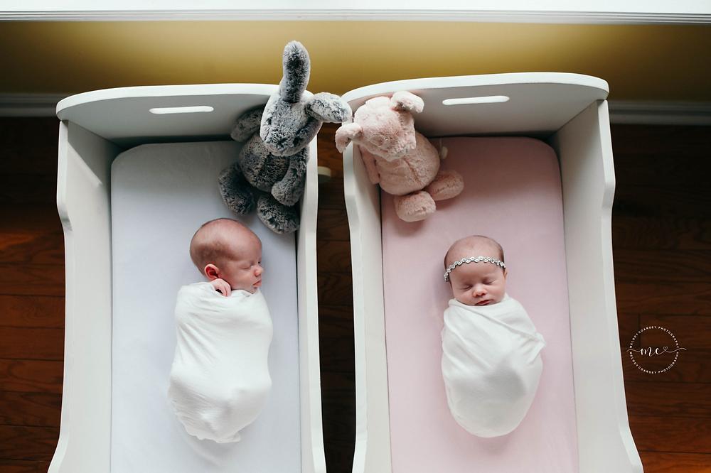 twin newborn portraits jacksonville