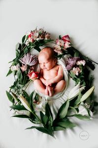 Best Newborn Photographer in Jacksonville FL