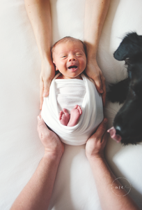 Best Newborn Photographers St Augustine FL