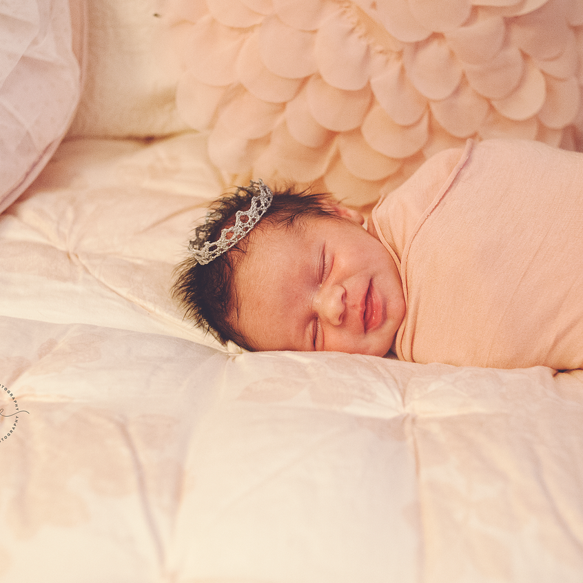 jax-newborn-photographer