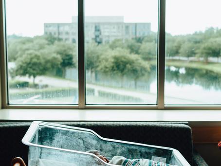 So Fresh, So New | Fresh 48 Photography | Jacksonville Newborn Photographer