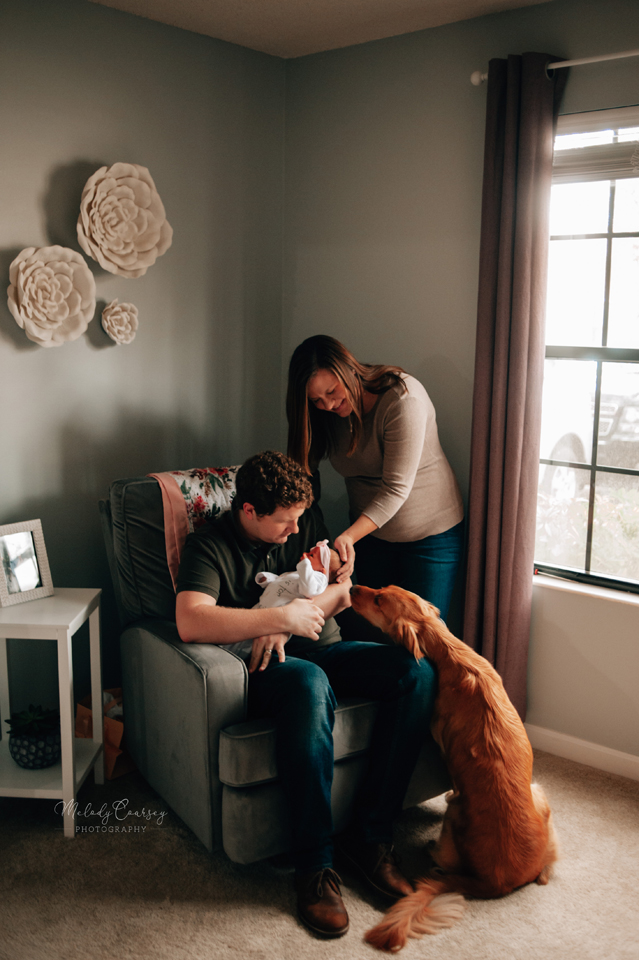 in home newborn photography near me