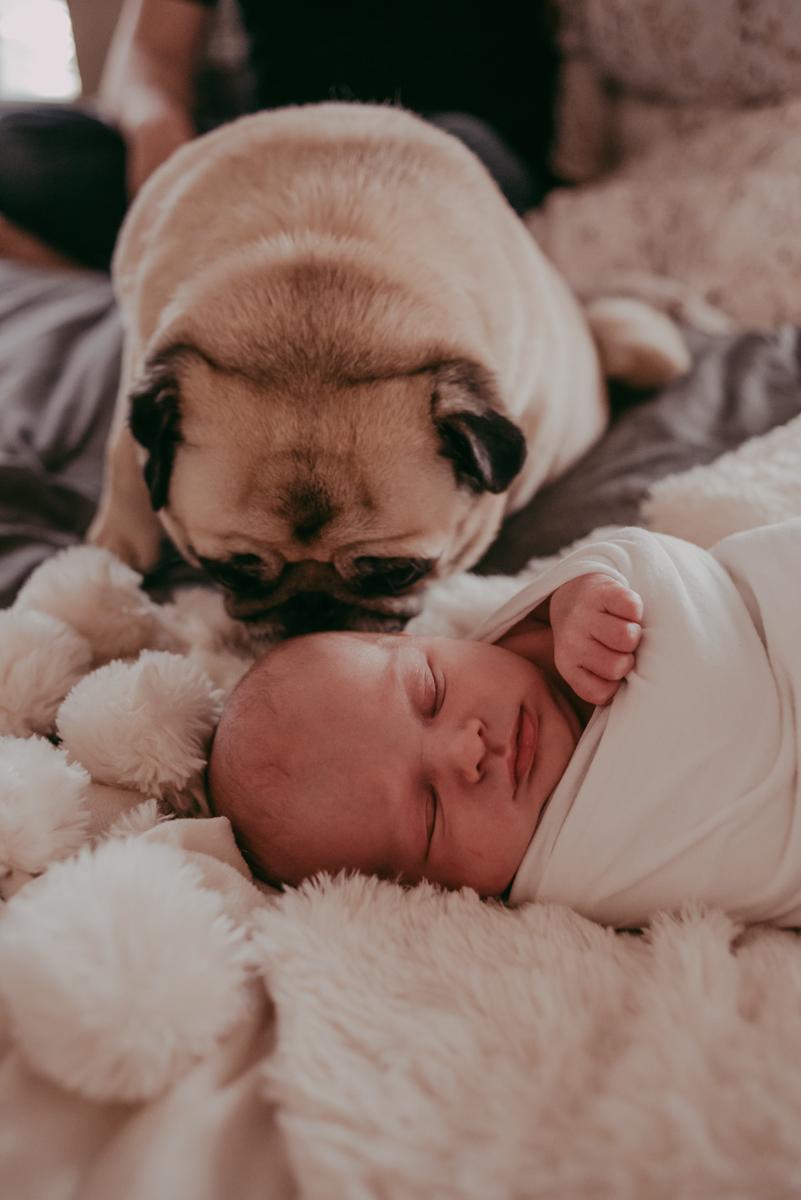 st augustine fl newborn photographers