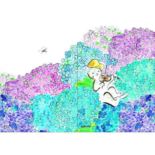 A5シングル・ファイル〈あじさいのステージⅡ〉