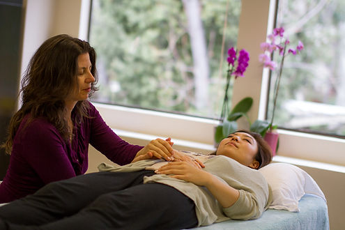 Laurie Schmiesing Certified BodyTalk Practitioner