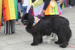 Peterborough Pride Parade 2021 (Mike Harris ESP Magazine) (40).JPG