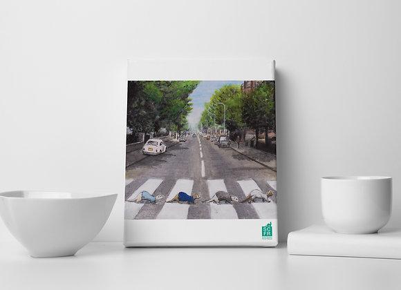 "Abbey Road Ferrets, 8"" x 10""Canvas Print"