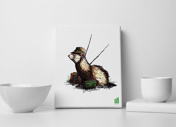 "Fisher Ferret, 8"" x 10""Canvas Print"