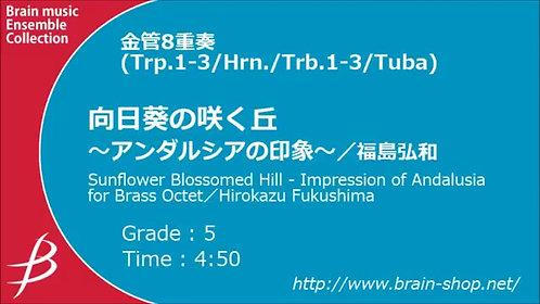 【銅管8重奏】向日葵山:安達盧西亞印象 Sunflower Blossomed Hill  |向日葵の咲く丘 アンダルシアの印象