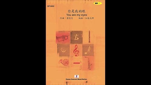 【混合重奏】你是我的眼 You are my eyes