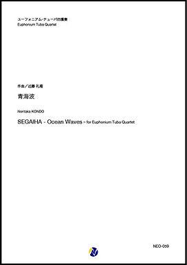 【低銅四重奏】青海波