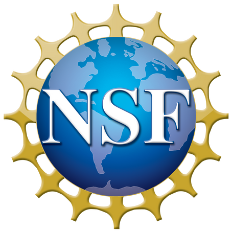 StEER Renewed and Expanded through New NSF Award