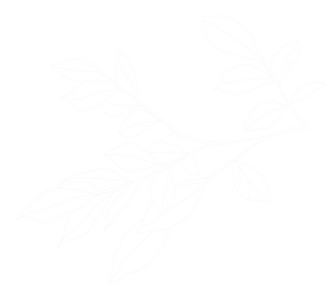 White%2520Leaves%2520_edited_edited.png