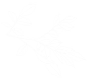 White%20Leaves%20_edited.png