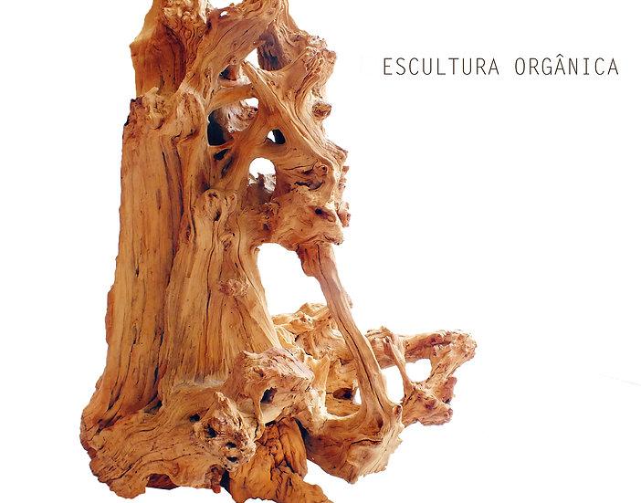 Escultura Orgânica