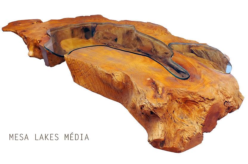 Mesa Lakes Média