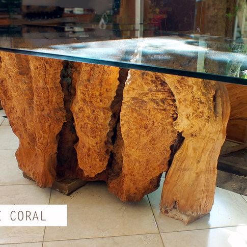 Base Coral